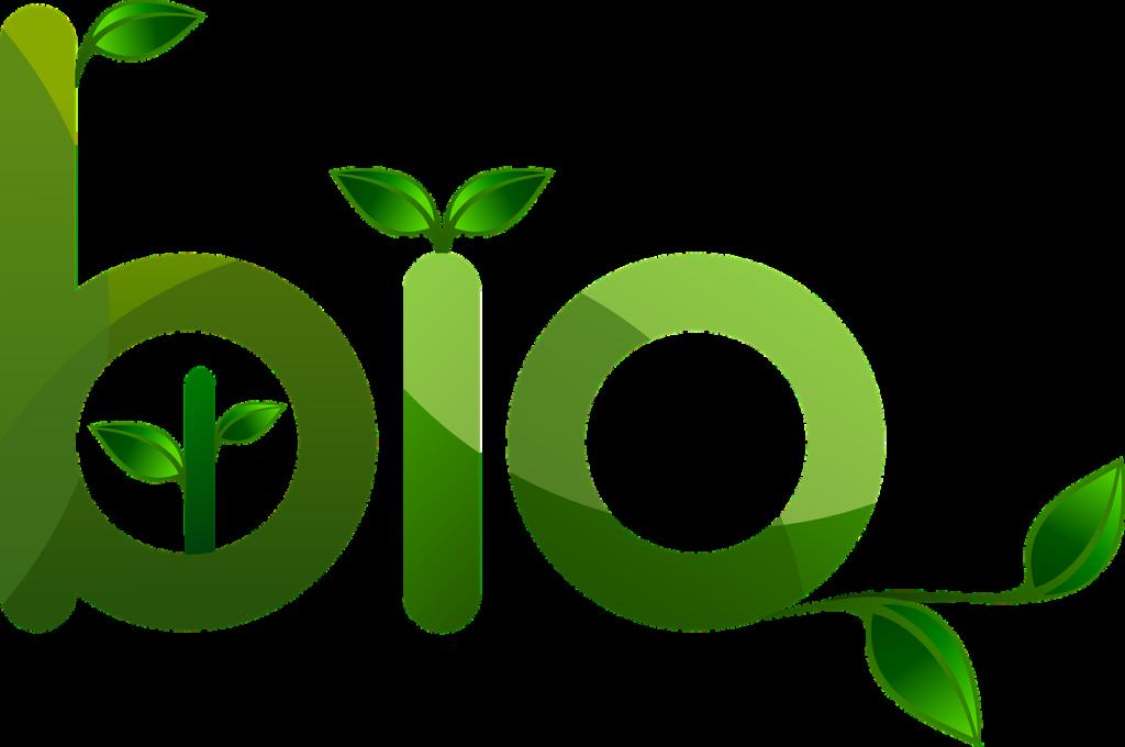 Le bioplastiche sono davvero un bene per l'ambiente?